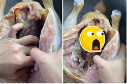 Làm thịt gà, cô gái tặc lưỡi khi thấy bộ gan nhìn như... ung thư