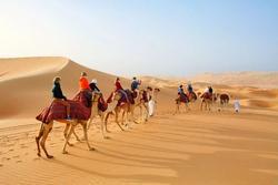 Tại sao Ả Rập có vô số sa mạc nhưng vẫn nhập khẩu cát?